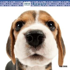 2018年度版 THE DOG カレンダー ビーグル|aquabase