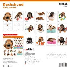 2018年度版 THE DOG カレンダー ダックスフンド|aquabase|02