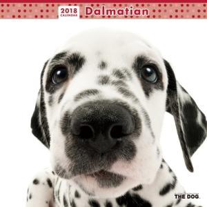 2018年度版 THE DOG カレンダー ダルメシアン|aquabase