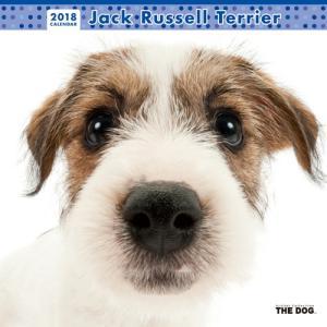 2018年度版 THE DOG カレンダー ジャック・ラッセル・テリア|aquabase