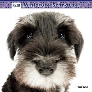 2018年度版 THE DOG カレンダー ミニチュア・シュナウザー|aquabase