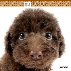 2018年度版 THE DOG カレンダー プードル|aquabase