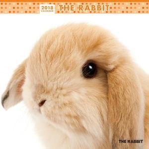 2018年度版 THE RABBIT (ウサギ) カレンダー|aquabase