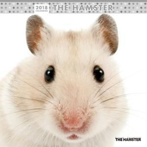 2018年度版 THE HAMSTER (ハムスター) カレンダー|aquabase