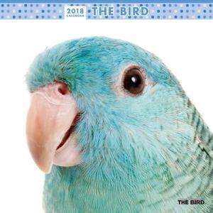 2018年度版 THE BIRD (インコ) カレンダー|aquabase