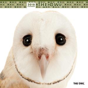 2018年度版 THE OWL (フクロウ) カレンダー|aquabase