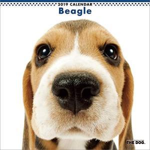 2019年度版 THE DOG カレンダー ビーグル|aquabase