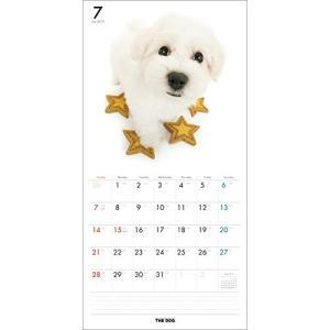 2019年度版 THE DOG カレンダー ビション・フリーゼ|aquabase|03