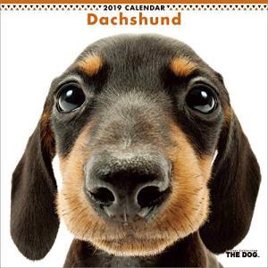 2019年度版 THE DOG カレンダー ダックスフンド|aquabase