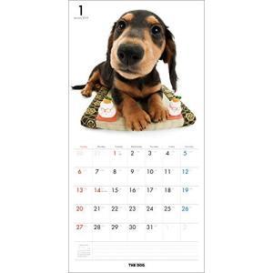 2019年度版 THE DOG カレンダー ダックスフンド|aquabase|02