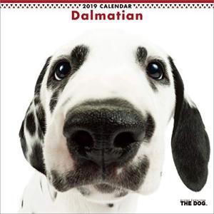 2019年度版 THE DOG カレンダー ダルメシアン|aquabase