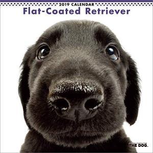 2019年度版 THE DOG カレンダー フラットコーテッド・レトリーバー|aquabase