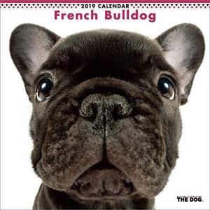 2019年度版 THE DOG カレンダー フレンチ・ブルドッグ|aquabase