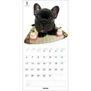 2019年度版 THE DOG カレンダー フレンチ・ブルドッグ|aquabase|02