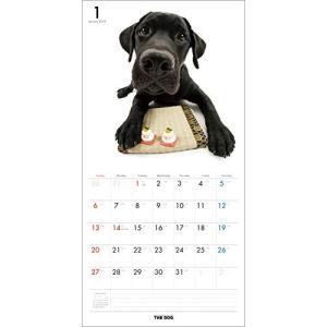 2019年度版 THE DOG カレンダー ラブラドール・レトリーバー|aquabase|02