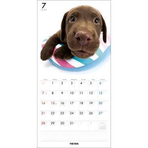 2019年度版 THE DOG カレンダー ラブラドール・レトリーバー|aquabase|03