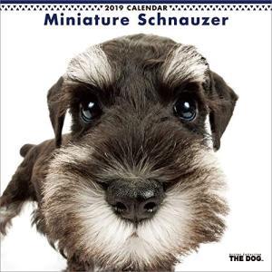 2019年度版 THE DOG カレンダー ミニチュア・シュナウザー|aquabase