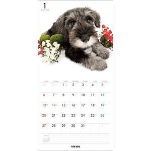 2019年度版 THE DOG カレンダー ミニチュア・シュナウザー|aquabase|02