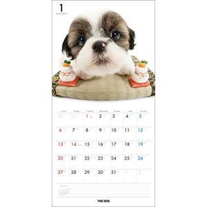 2019年度版 THE DOG カレンダー シー・ズー|aquabase|02
