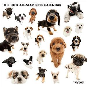 2019年度版 THE DOG カレンダー ALL-STAR aquabase