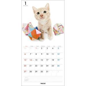 2019年度版 THE CAT カレンダー ミックス aquabase 02