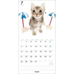 2019年度版 THE CAT カレンダー ミックス aquabase 03