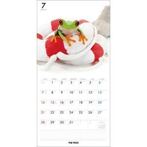 2019年度版 THE FROG カレンダー|aquabase|03