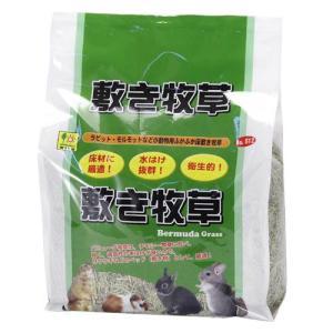 三晃商会 敷き牧草 1kg|aquabase