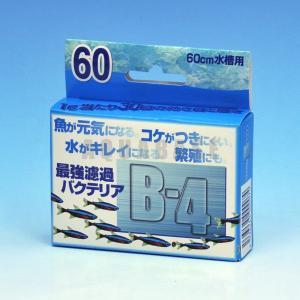 パピエ・C B-4 最強濾過バクテリア 60cm水槽用|aquabase