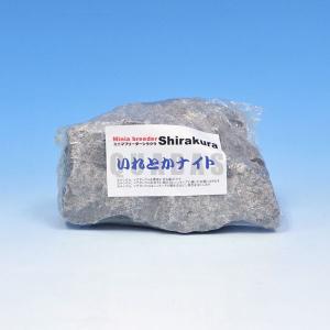 シラクラ いれとかナイト レイアウト用|aquabase