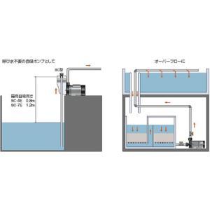 レイシー【マグネットポンプ RMD-1001】循環ポンプ水量1500L対応  管理100|aquacraft|03