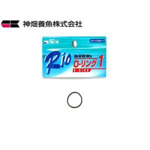 カミハタ【Rio Oリング1】 管理60|aquacraft