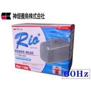 カミハタ【リオ Rio+1100/60Hz】水中ポンプ 流量毎分26L 90〜120cm水槽用 管理60|aquacraft