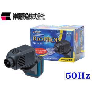 カミハタ【リオプロップ2000 50Hz】 管理60|aquacraft