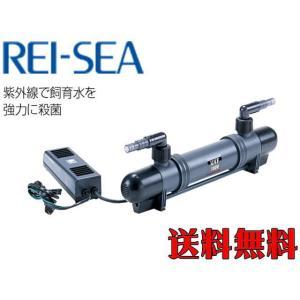 レイシー【UV殺菌灯 UVF-1000】強制循環式UV殺菌灯 管理100|aquacraft