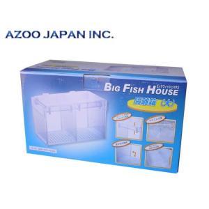 アズー【ビックフィッシュハウス】 管理80|aquacraft
