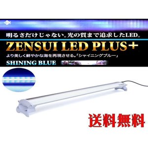 【送料無料】ゼンスイ LEDプラスシャイニングブルー60cm 管理80|aquacraft