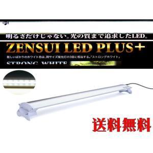 【送料無料】ゼンスイ LEDプラスストロングホワイト60cm 管理80|aquacraft