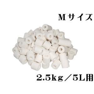 ガラス製ろ材【ガラス製リングろ材/M】 管理60 aquacraft