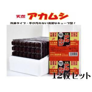 富城物産【冷凍餌 天然アカムシ100gx12枚】1枚150円 管理クール60|aquacraft