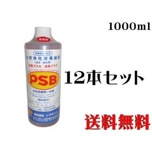 シマテック【PSB1L 12本】1本680円 淡水海水バクテリア 管理100|aquacraft