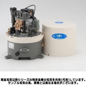 テラル多久 WP-406T-1 浅井戸用ポンプ (400W/単相100V/60Hz) (TERAL KEGONシリーズ・旧三菱)|aquaearth