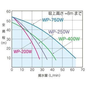 テラル多久 WP-406T-1 浅井戸用ポンプ (400W/単相100V/60Hz) (TERAL KEGONシリーズ・旧三菱)|aquaearth|02