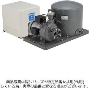 テラル多久 PG-757FW-5 深井戸用ポンプ 超特価SALE開催 ジェット別売 三相200V 50hz 旧ナショナル Nシリーズ TERAL 日本製 750W