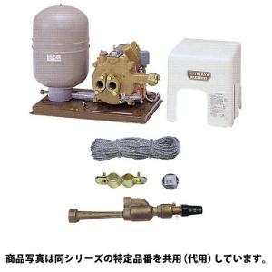 イワヤポンプ JPS-406-60 深井戸ポンプ オンラインショップ + 4J18B4 吸上高さ18m 単相100V 美品 セット 出力400W 砲金ジェット 60hz用