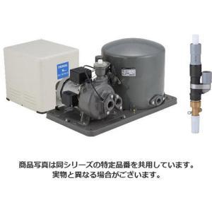 テラル多久 PG-607FW-6 Nシリーズ 旧ナショナル 深井戸用自動ポンプ 単相100V セット 人気急上昇 P-4B-24CJA + 600W ジェット 永遠の定番モデル 60hz