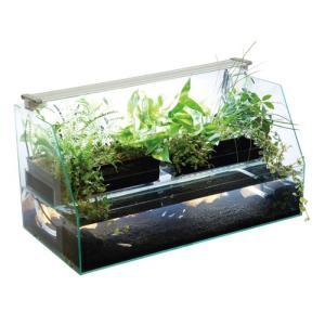 観賞魚の飼育をしながら、観葉植物や野菜などの水耕栽培もおこなうことのできる水槽セットです!  ・魚か...