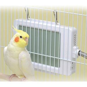 【小鳥の日】サンコー 外付け式バードヒーター (サイズ:124×190x厚み25.5mm)☆