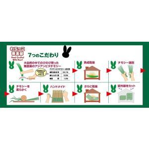 KAWAI わらっこ倶楽部 トンネルハウスの詳細画像2
