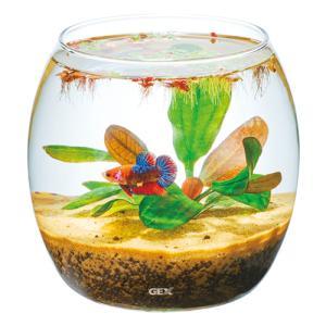 観賞魚・水草育成などに使用できるガラス製コンパクト水槽です。  メダカや小型金魚の飼育、水草のボトル...